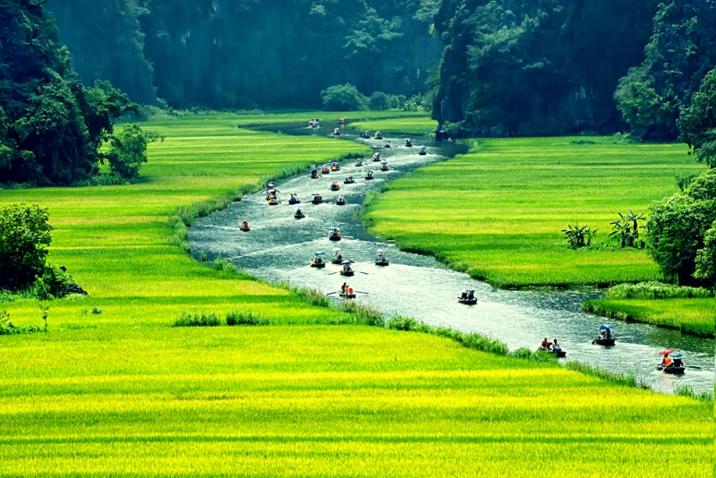 Best Time to Travel to Viet Nam